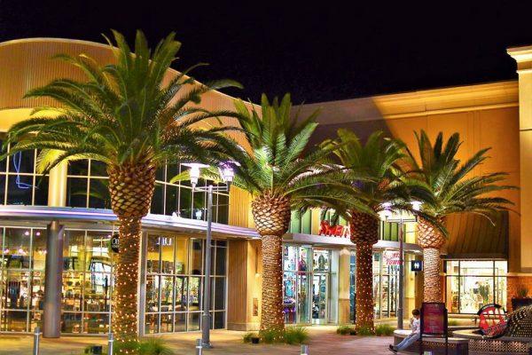 Landscape Lighting in Las Vegas, Nevada 2 White Guys16